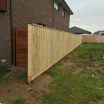 Standard Timber fence with Capping
